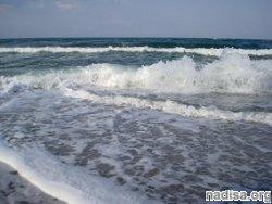В Черном море случилось землетрясение
