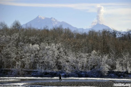 Вулкан Шивелуч на Камчатке выбросил четыре столба пепла
