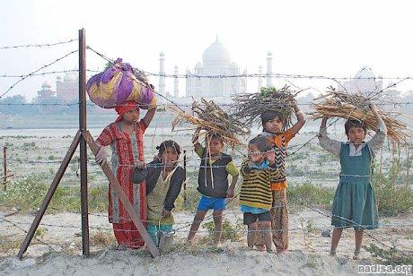 В результате землетрясения в Индии пострадали более ста человек
