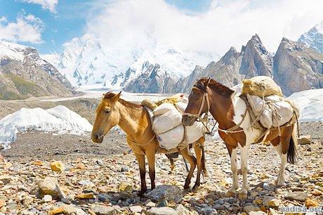 В Пакистане произошло несколько землетрясений, есть жертвы