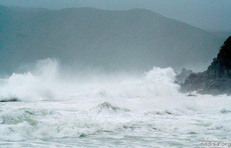 В Японии произошло землетрясение, жертв нет