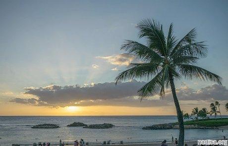 Остров Гавайи всколыхнуло землетрясение магнитудой 4,6