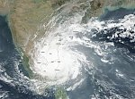 Vardah hits Chennai with unexpected force, 7 people dead