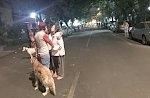 В Мексике произошло землетрясение магнитудой 5,9