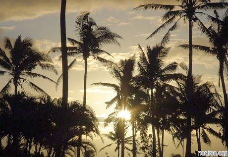 У берегов Фиджи произошло землетрясение магнитудой 8,2
