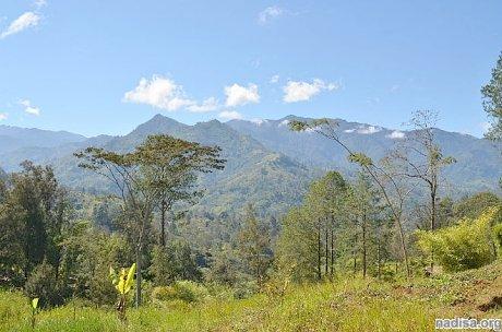 В Папуа-Новой Гвинее произошло землетрясение магнитудой 6,4