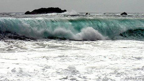 В Индонезии произошло землетрясение магнитудой 6,5. Власти Индонезии выпустили предупреждение о цунами