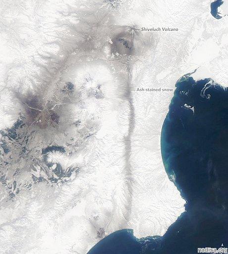 Выброс вулкана Шивелуч на спутниковых фотографиях