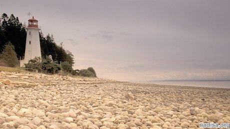 У побережья Канады произошло землетрясение магнитудой 6,3