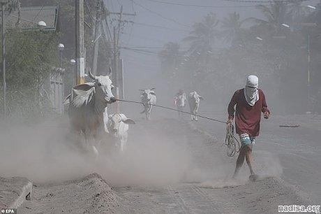 Из-за угрозы катастрофического извержения вулкана Тааль эвакуированных филиппинцев не пускают домой